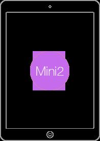 mini2